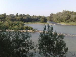 Desembocadura del río Gállego en el Ebro